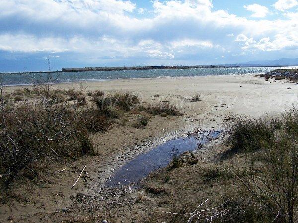 spiaggia di Mateille e allevamenti di molluschi di Gruissan