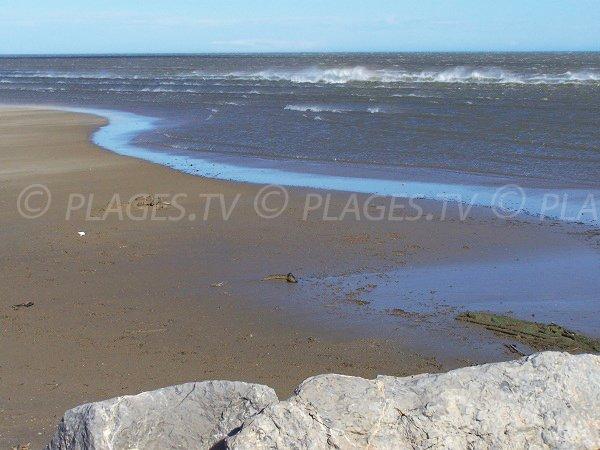 Plage de sable à Gruissan à proximité de l'étang de Mateille