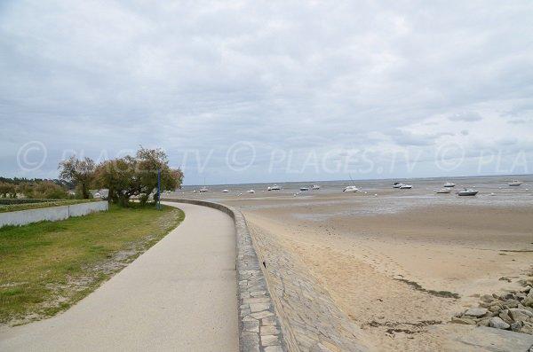 Sentier le long de la plage de Mauret à Andernos les Bains