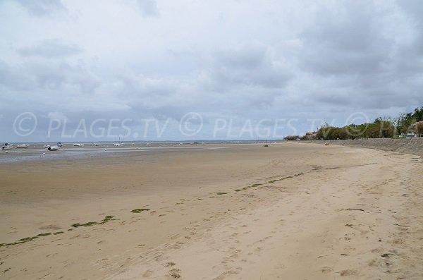 Photo de la plage au niveau du camping des Fontaines à Andernos les Bains