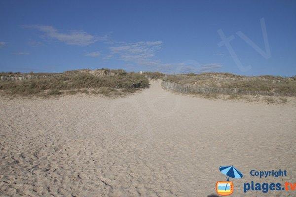 Sentier d'accès à la plage du Mentor - Plouharnel