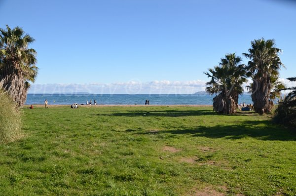lawn of the Mérou beach in Hyères - Ayguade