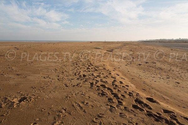 Photo de la plage naturiste de Merville Franceville dans le Calvados