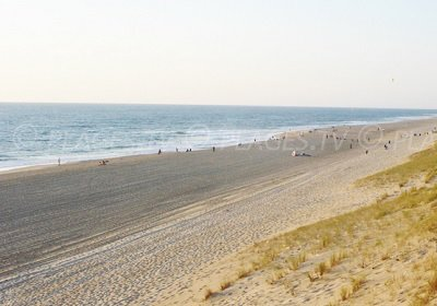 Beach in Messanges in Landes department in France