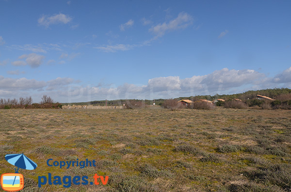 Environnement de la plage du Métro - Tarnos