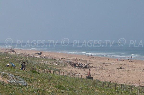 Plage océane à Tarnos proche du centre ville