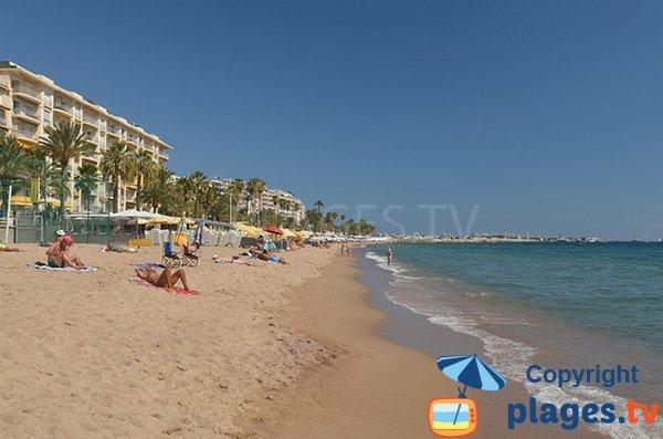 Private beaches in Cannes - Midi area