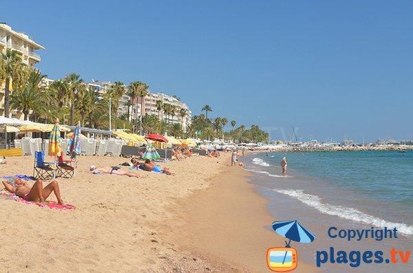 Private beach in Cannes in June