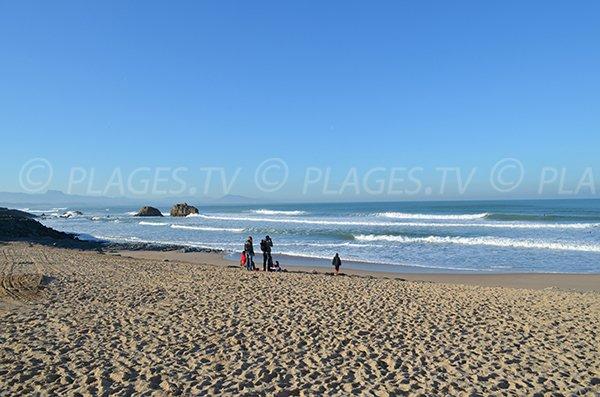 Milady beach in Biarritz in winter