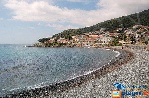 Spiaggia di Miomo in Corsica