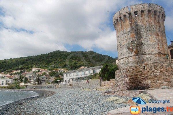 Foto della spiaggia di Miomo a Santa-Maria-di-Lota - Corsica