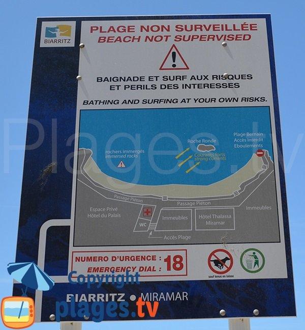 Plage autorisée aux chiens à Biarritz