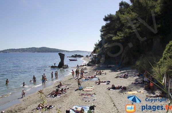 Mitre cove in Toulon
