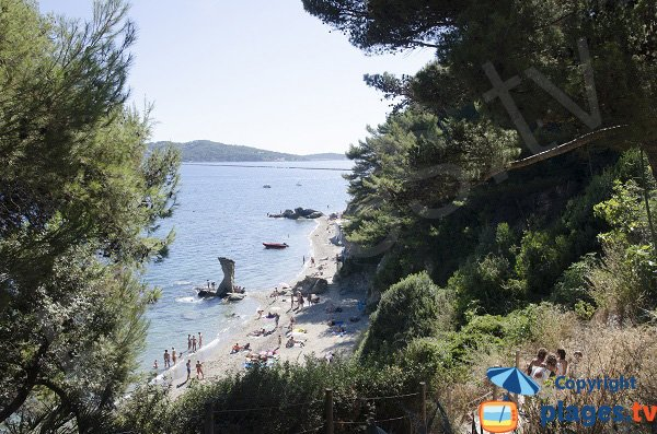 Mitre beach in Toulon in France