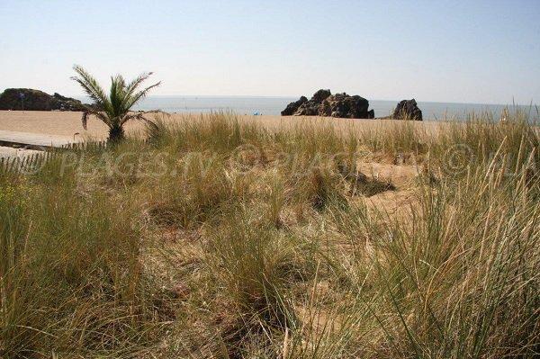 Photo de la plage de Saint Marc à Saint Nazaire