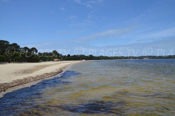Plage au lac de Carcans