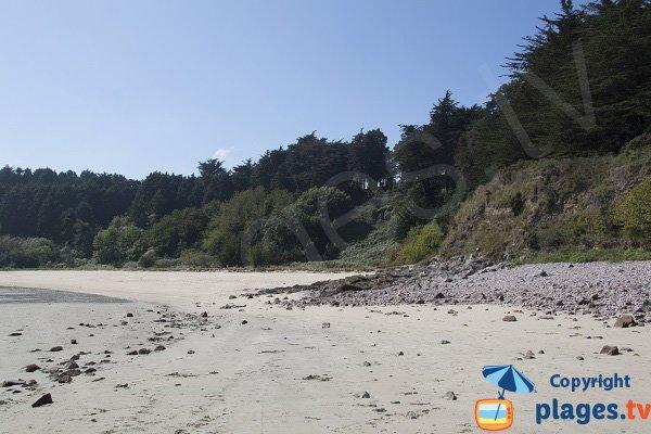 Environnement sauvage de la plage des Montiers - Erquy