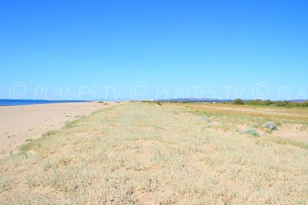Ambiente dalla spiaggia Montilles di Vendres