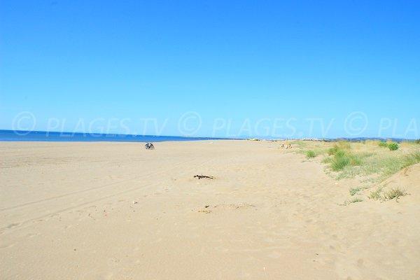 Spiaggia Les Montilles a Vendres in Francia