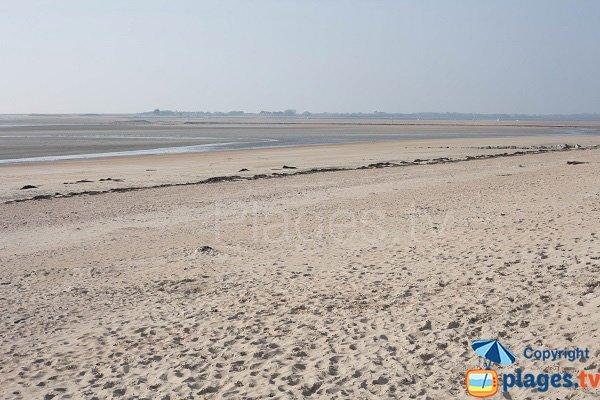 Montmartin-sur-Mer: sa plage avec vue sur la pointe d'Agon