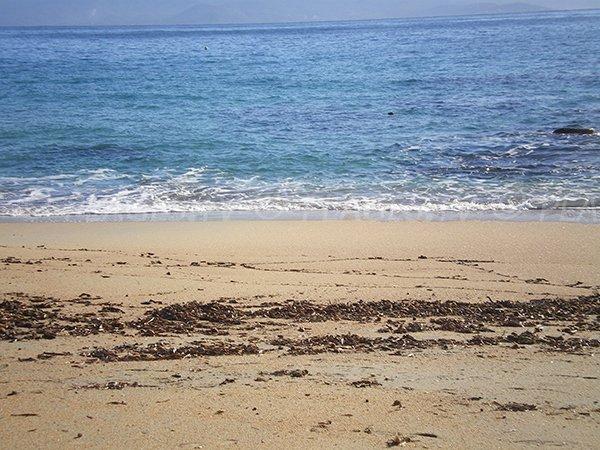 Sable sur la plage de Moorea