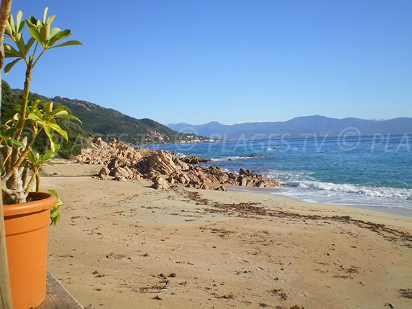 Vue sur la plage de Moorea depuis un restaurant