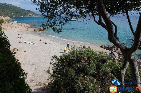 Plage de Moorea à Ajaccio en été