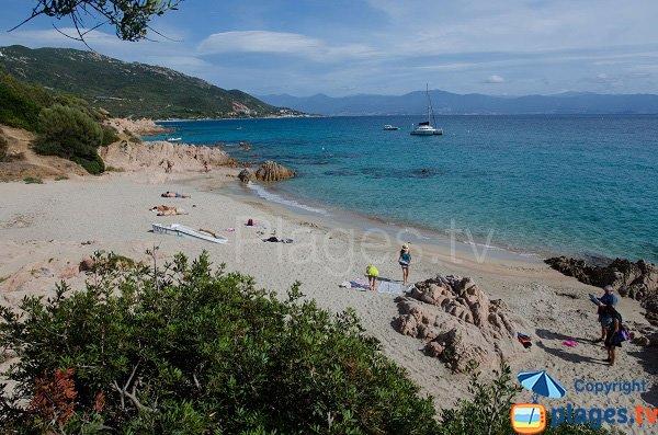 Plage avec eau turquoise à Ajaccio - Moorea