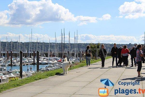 Promenade piétonne de la plage de Brest et du port