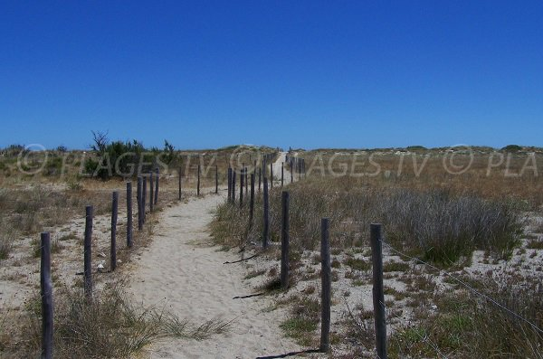 Access to the Mouret beach - Leucate