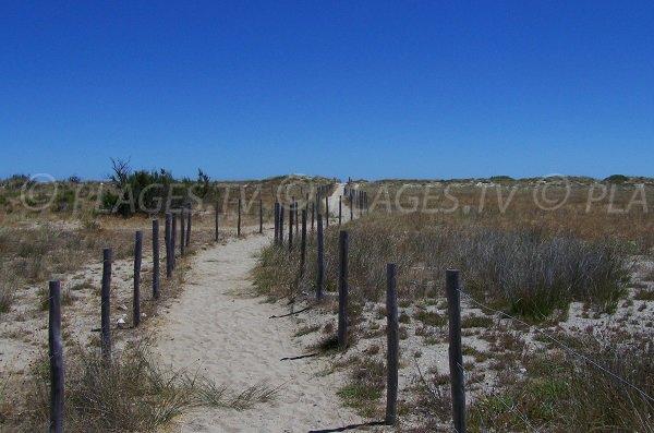Accès à la plage du Mouret - Leucate