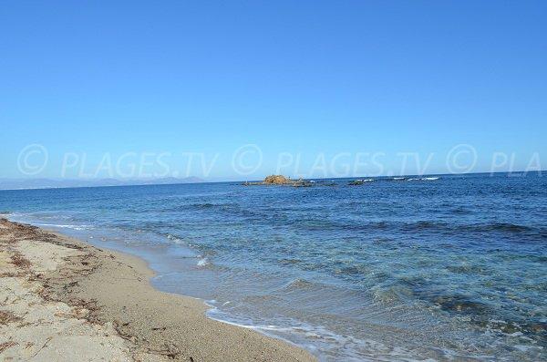 Clarté de l'eau sur la plage de la Moutte
