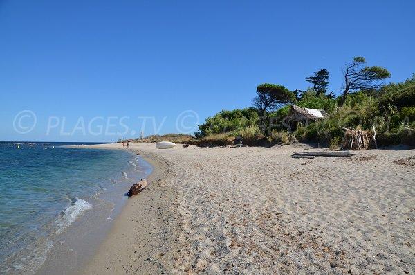 Zone nord de la plage de la Moutte - Saint Tropez