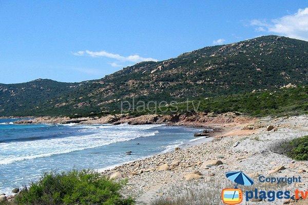 Spiaggia di Mucchiu Biancu in Corsica