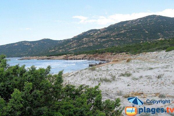 Foto della spiaggia di Mucchiu Biancu in Corsica