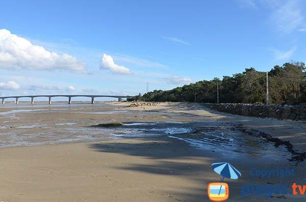Photo de la plage du Mus de Loup à La Tremblade