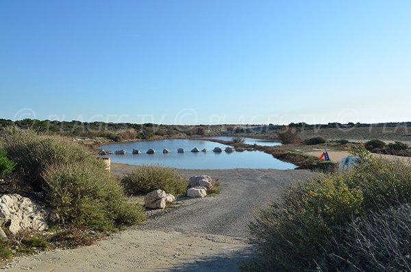 Ponds around Bonnieu beach - Martigues