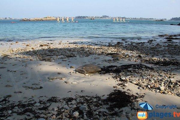 Pebbles on the beach of Roscoff - naturist