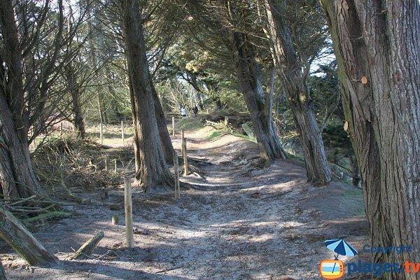 Access to naturist beach of Roscoff