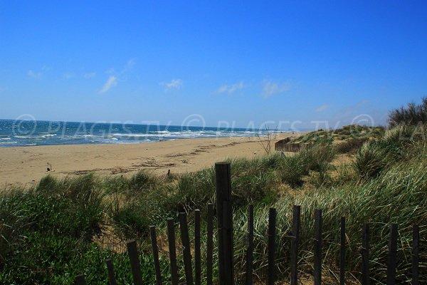 Vue de la plage naturiste de Sérignan en direction de Valras
