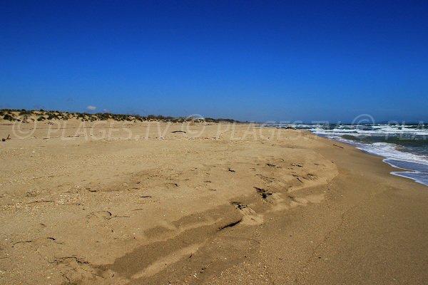 Grande plage de sable naturiste dans l'Hérault à Sérignan