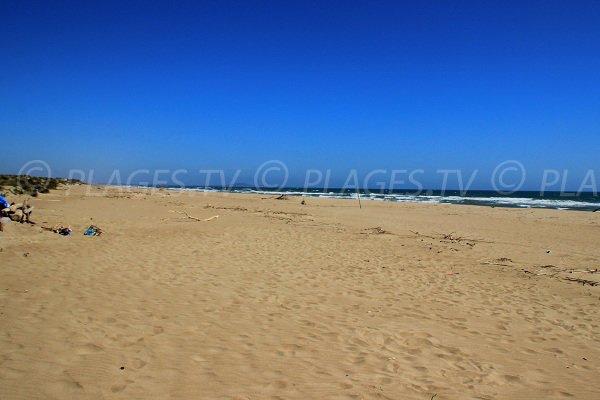 Plage naturiste avec des dunes à Sérignan