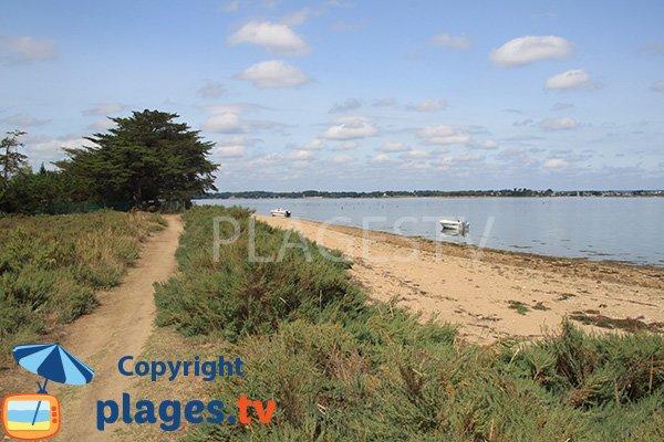 Grande plage cachée sur l'ile d'Arz