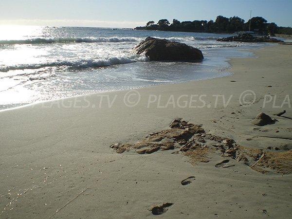 Vue sur les plages voisines à Ajaccio