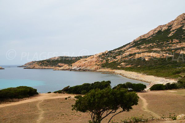 Baie de Nichiareto en Corse entre Calvi et Galéria
