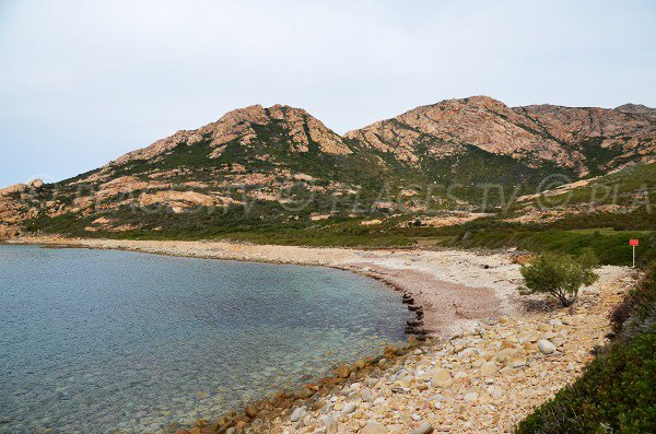 Photo de la plage de Nichiareto en Corse