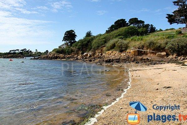 Environnement de la plage de Nod Goven sur l'ile de Bréhat