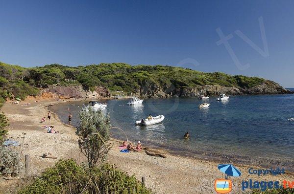 Photo de la plage Noire du Langoustier à Porquerolles