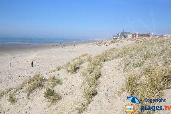 Spiaggia e dune a Berck - Francia