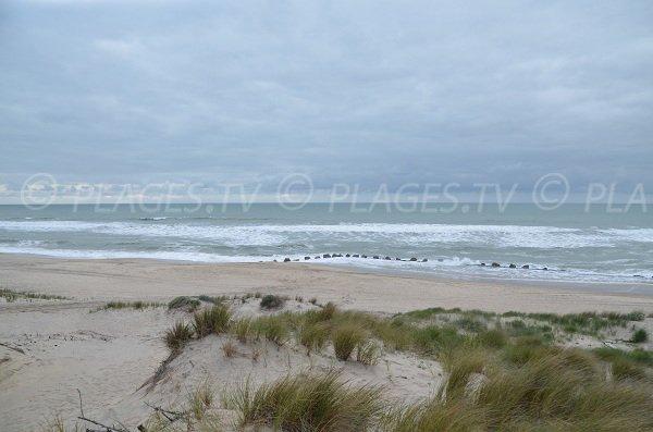 Dunes de la plage Nord de Soulac sur Mer